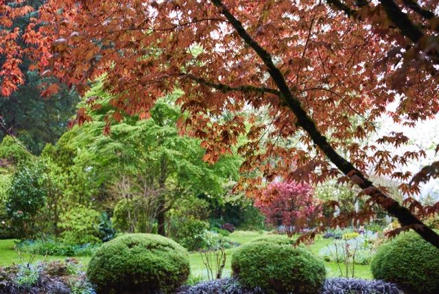 Marlana's Garden